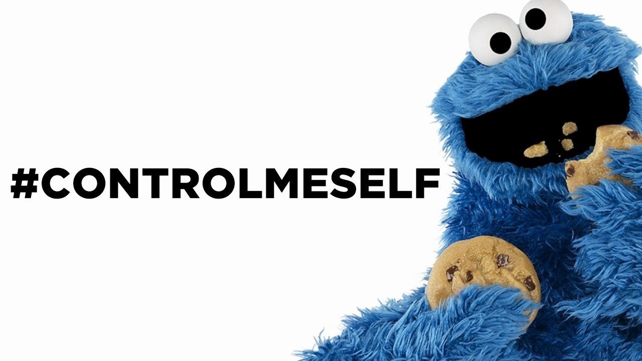 cookie-monster-me-want-icona-pop-spoof-e